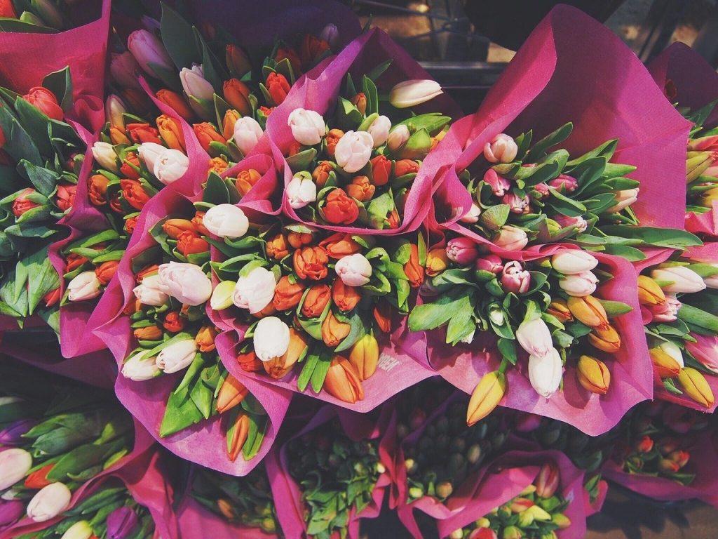 Droogbloemen kopen
